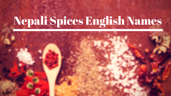 Nepali Masala in English